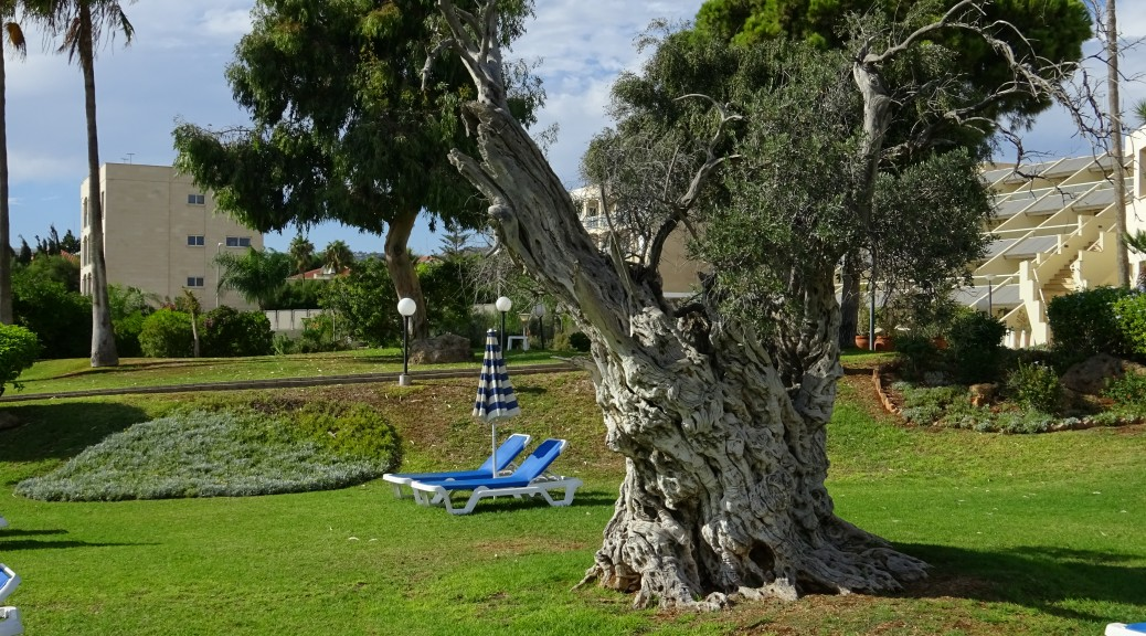Limassol 001