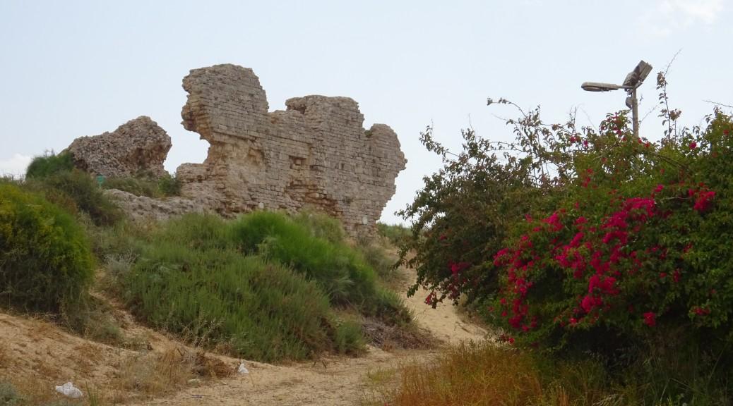 Ashkelon Hafen und Nationalpark 068