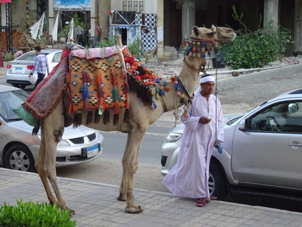 Hurghada 006