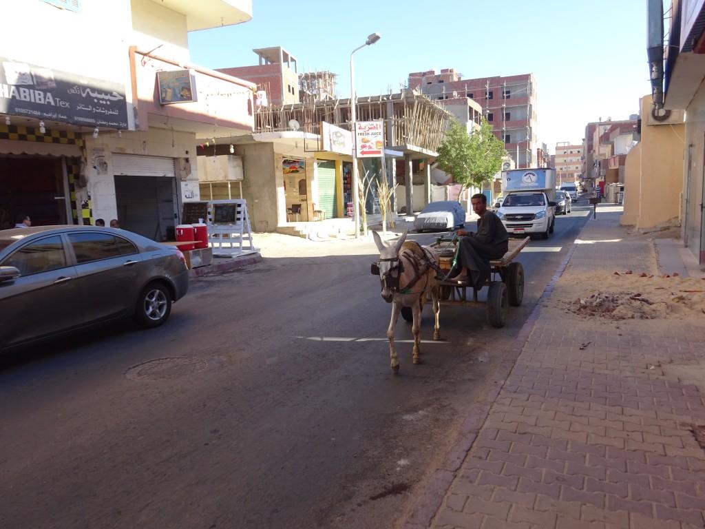 Hurghada 020