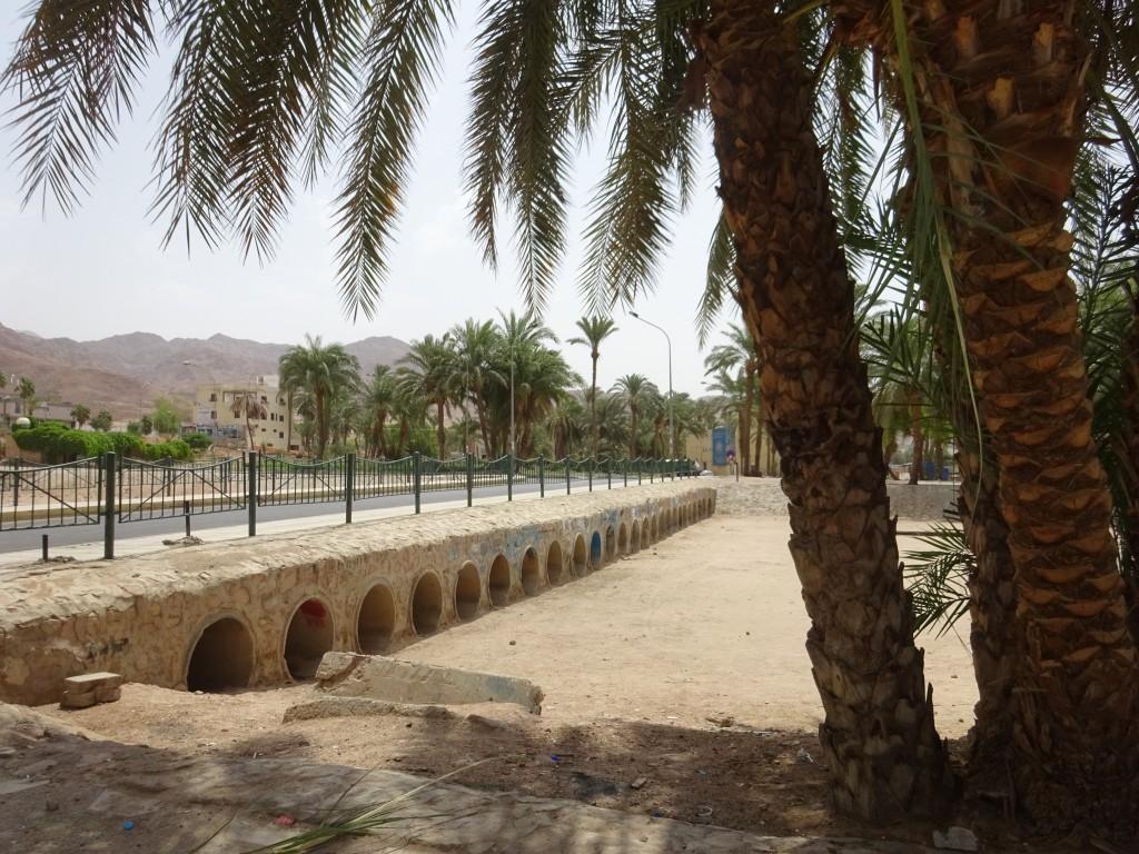Aqaba 025