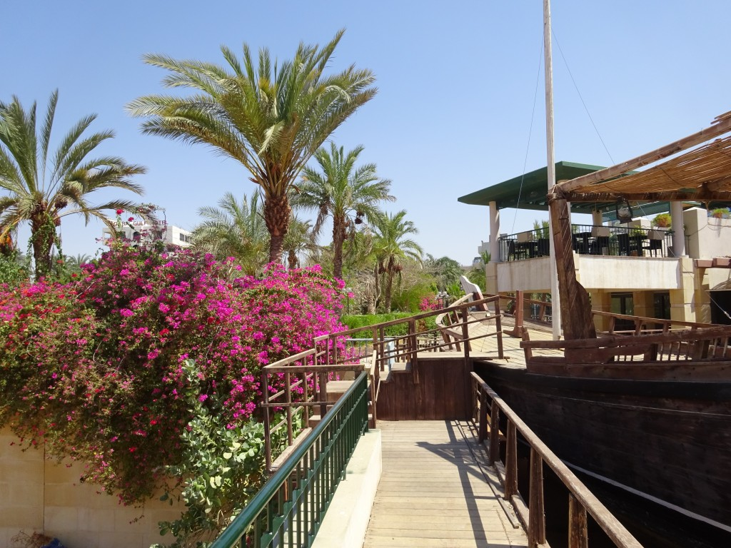 Aqaba 028