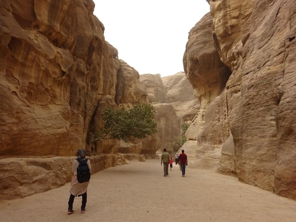 Aqaba, Petra und Wüstenstaub 033