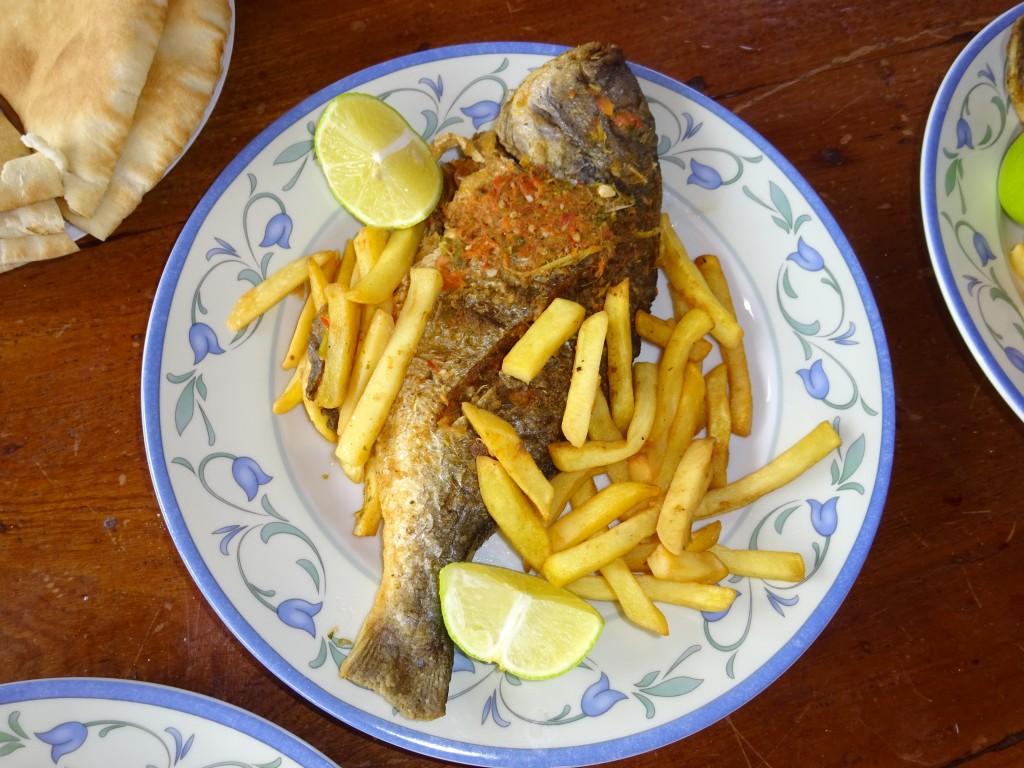 Aqaba, Bäckereibesichtigung und Eilat 060